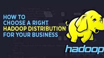 How-To-Choose-A-Right-Hadoop-Distribution-For-Your-Business